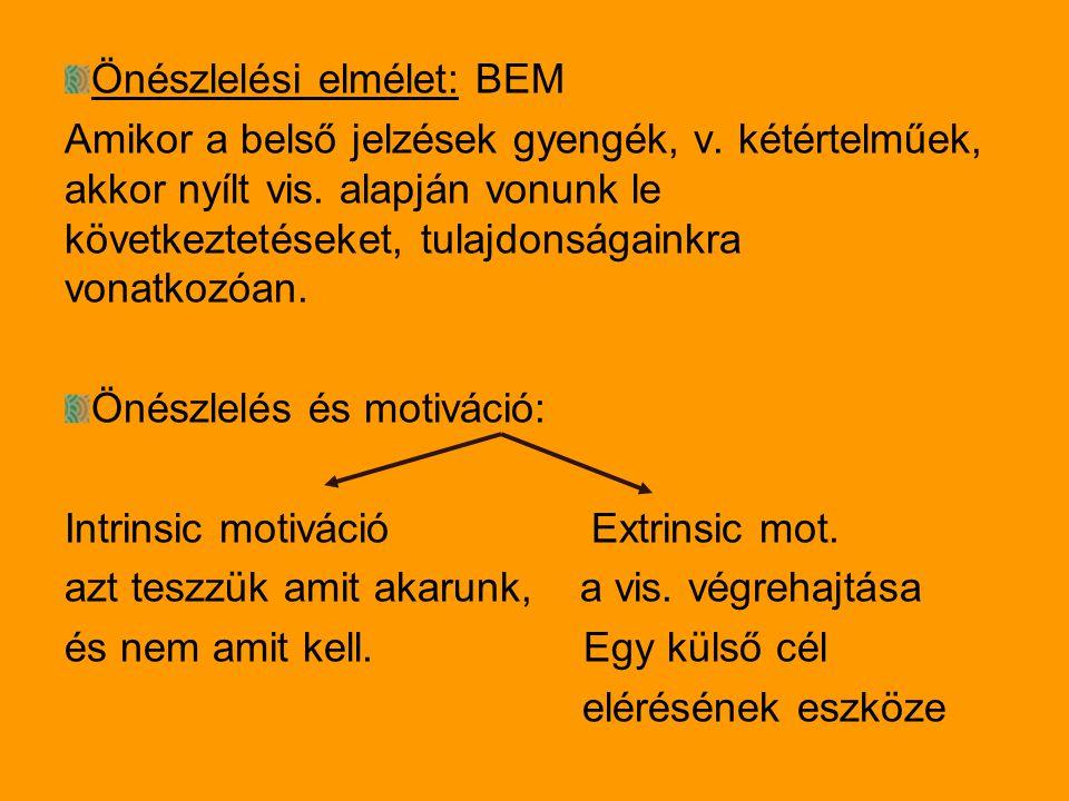 Önészlelési elmélet: BEM