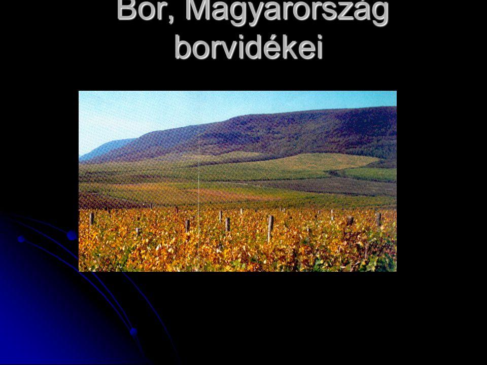Bor, Magyarország borvidékei