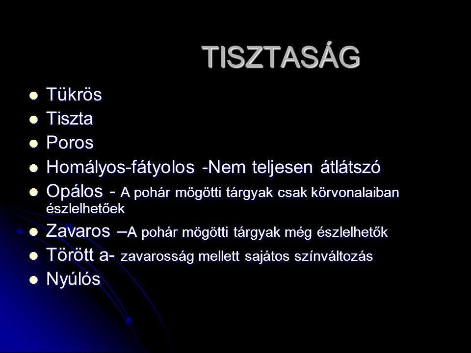 TISZTASÁG Tükrös Tiszta Poros Homályos-fátyolos -Nem teljesen átlátszó