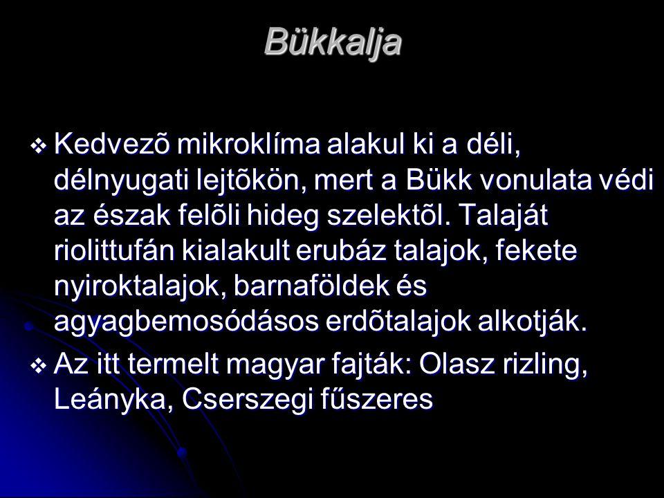 Bükkalja