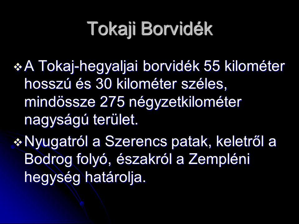 Tokaji Borvidék A Tokaj-hegyaljai borvidék 55 kilométer hosszú és 30 kilométer széles, mindössze 275 négyzetkilométer nagyságú terület.