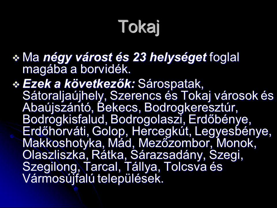 Tokaj Ma négy várost és 23 helységet foglal magába a borvidék.