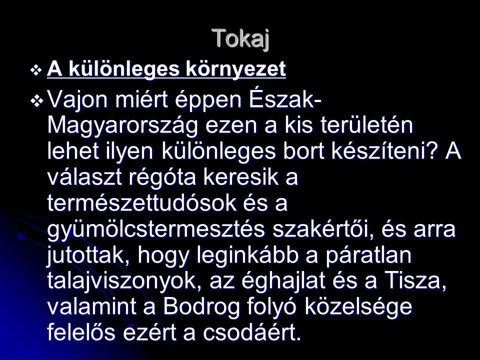 Tokaj A különleges környezet.