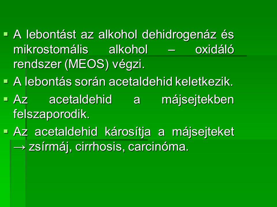 A lebontást az alkohol dehidrogenáz és mikrostomális alkohol – oxidáló rendszer (MEOS) végzi.