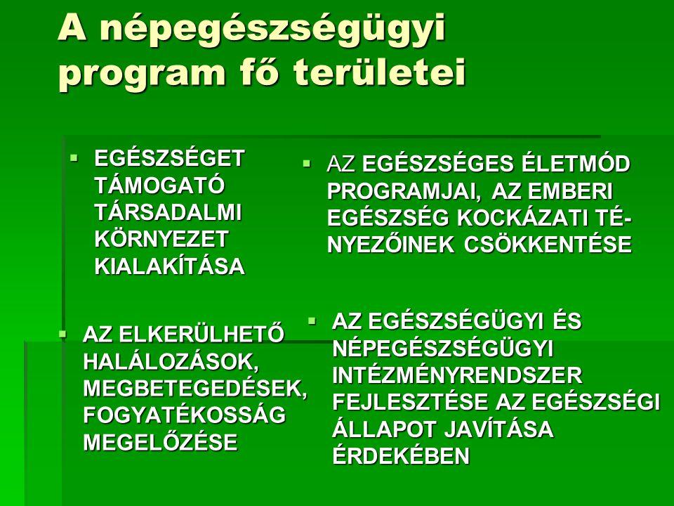 A népegészségügyi program fő területei