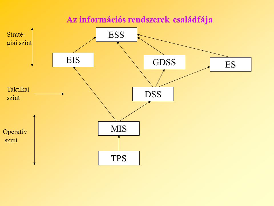 Az információs rendszerek családfája