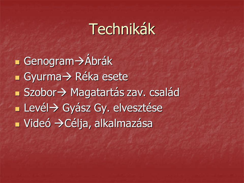 Technikák GenogramÁbrák Gyurma Réka esete