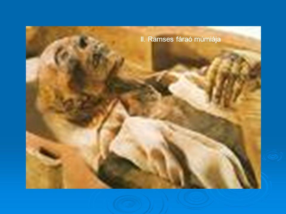 ll. Ramses fáraó múmiája