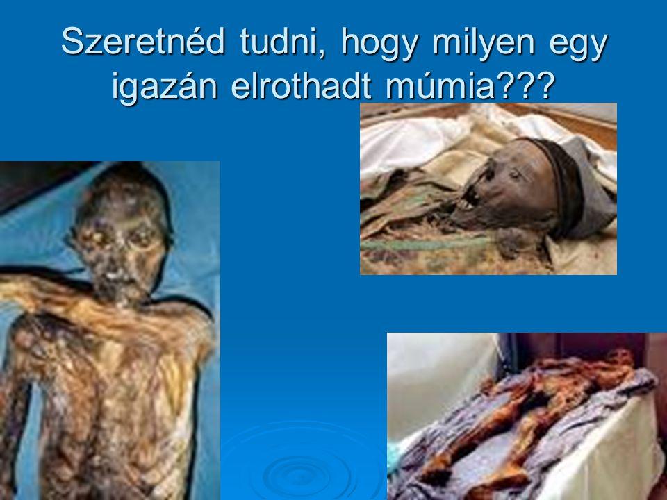 Szeretnéd tudni, hogy milyen egy igazán elrothadt múmia