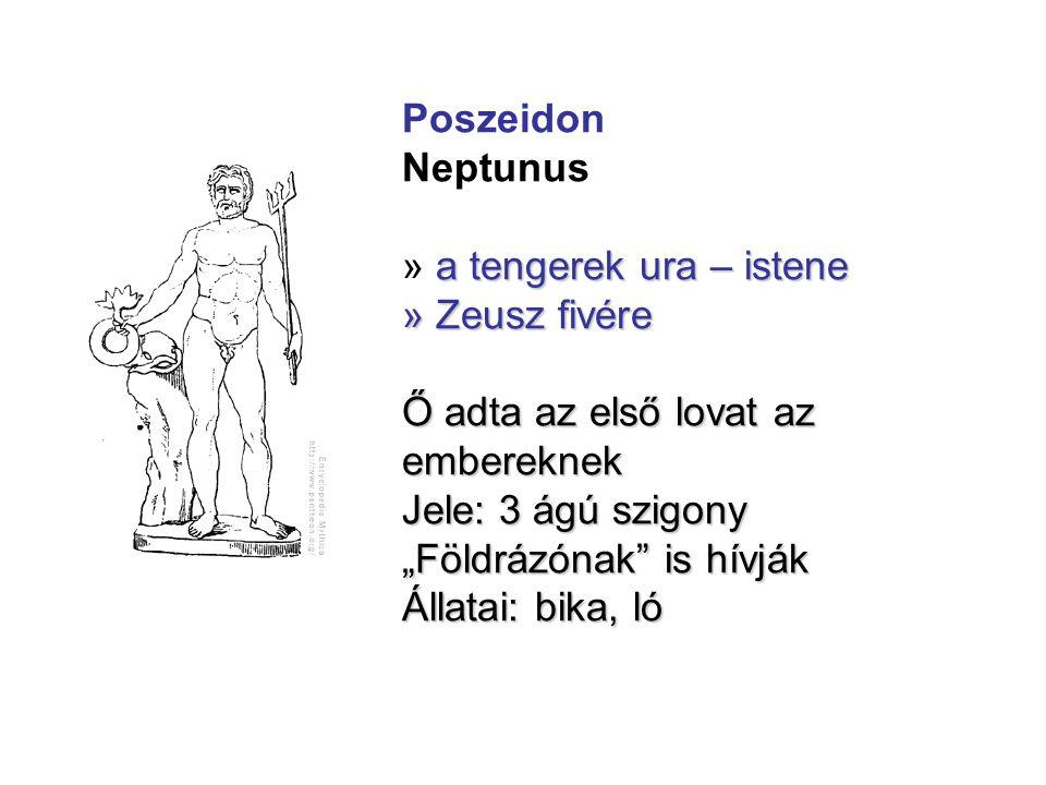 Poszeidon Neptunus. » a tengerek ura – istene. » Zeusz fivére. Ő adta az első lovat az embereknek.