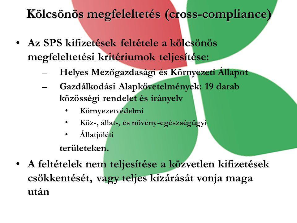 Kölcsönös megfeleltetés (cross-compliance)