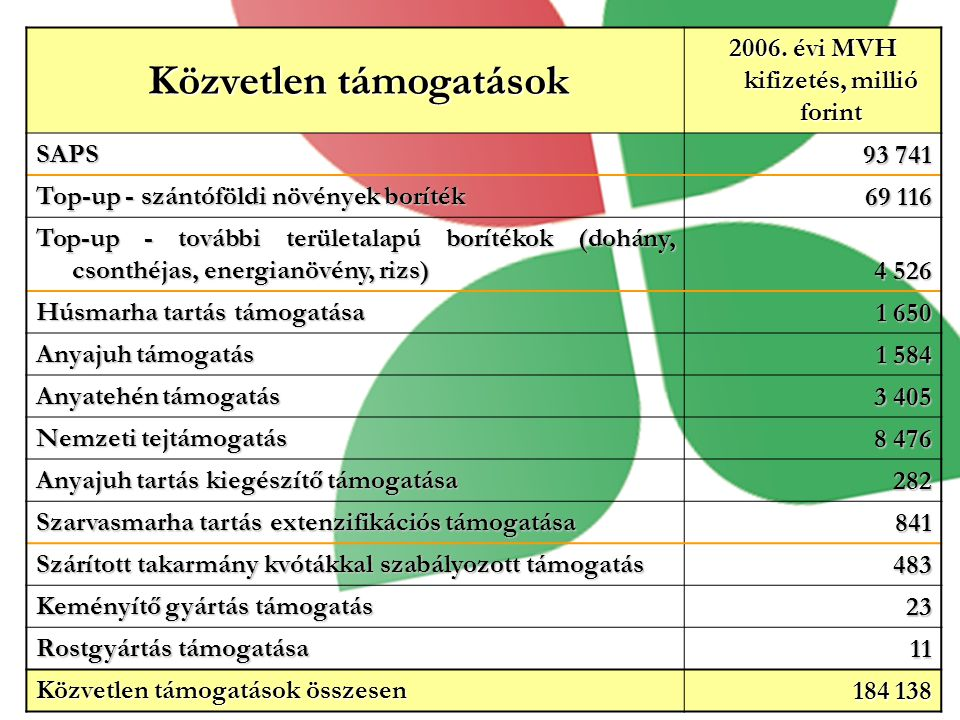 Közvetlen támogatások 2006. évi MVH kifizetés, millió forint