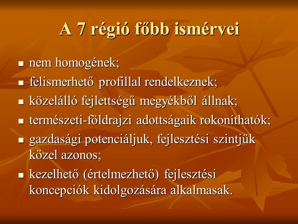 A 7 régió főbb ismérvei nem homogének;
