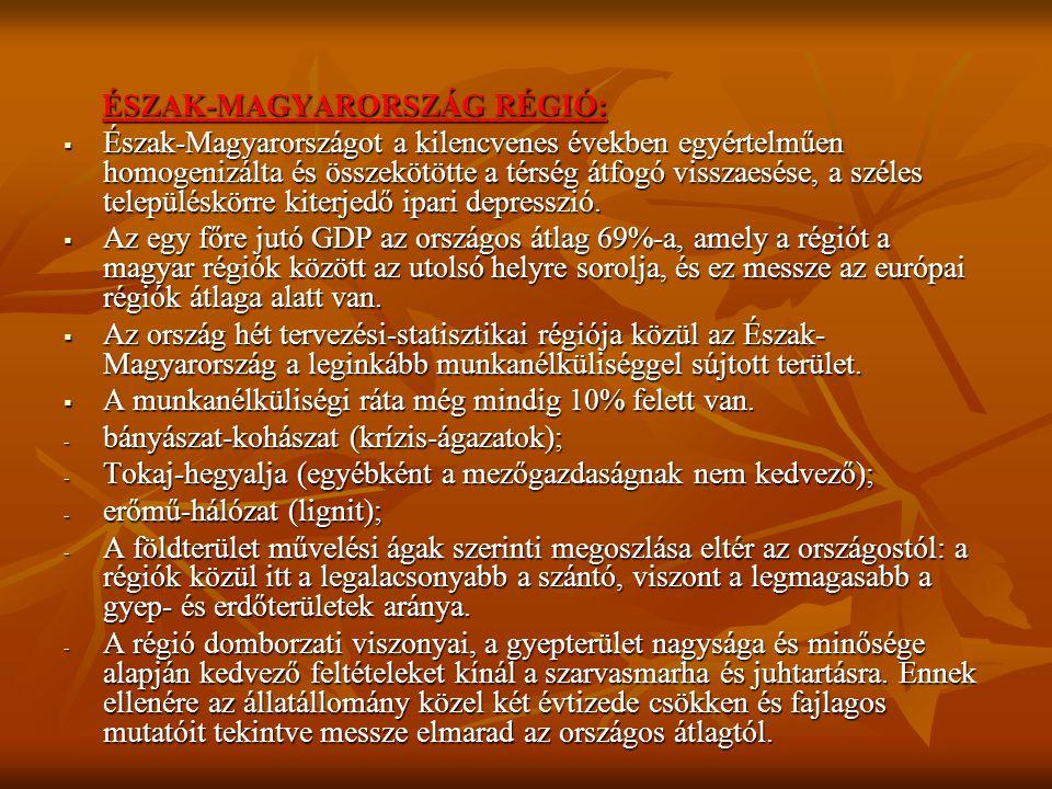 ÉSZAK-MAGYARORSZÁG RÉGIÓ: