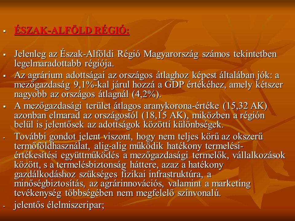ÉSZAK-ALFÖLD RÉGIÓ: Jelenleg az Észak-Alföldi Régió Magyarország számos tekintetben legelmaradottabb régiója.