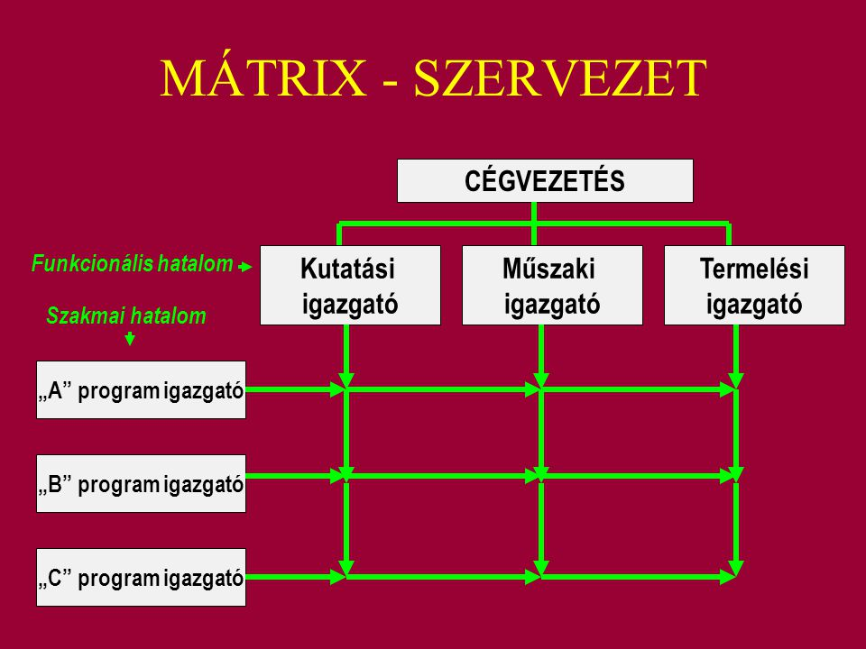 MÁTRIX - SZERVEZET CÉGVEZETÉS Kutatási igazgató Műszaki igazgató