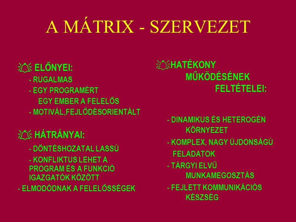 A MÁTRIX - SZERVEZET - DINAMIKUS ÉS HETEROGÉN KÖRNYEZET