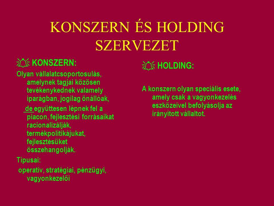 KONSZERN ÉS HOLDING SZERVEZET