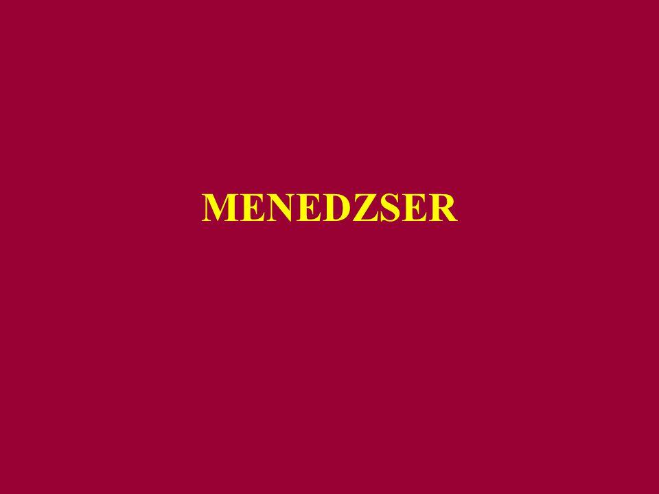 MENEDZSER