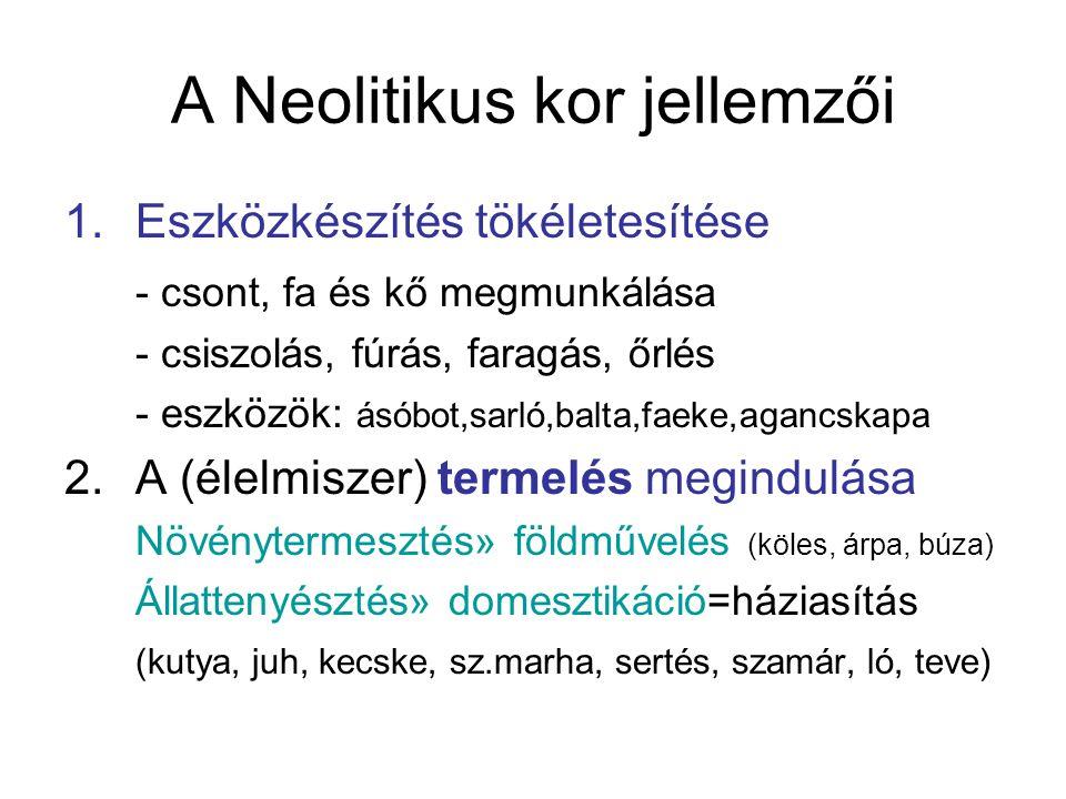 A Neolitikus kor jellemzői