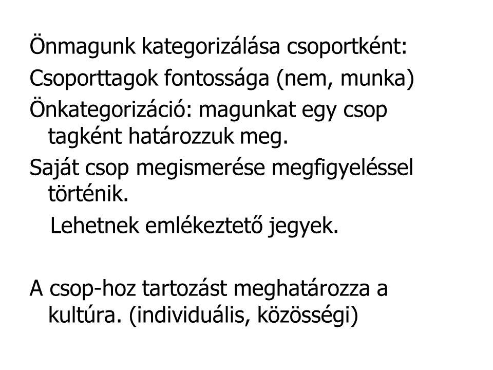 Önmagunk kategorizálása csoportként: