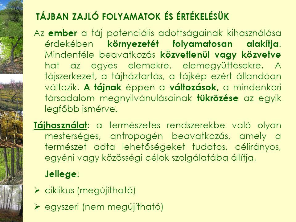 TÁJBAN ZAJLÓ FOLYAMATOK ÉS ÉRTÉKELÉSÜK