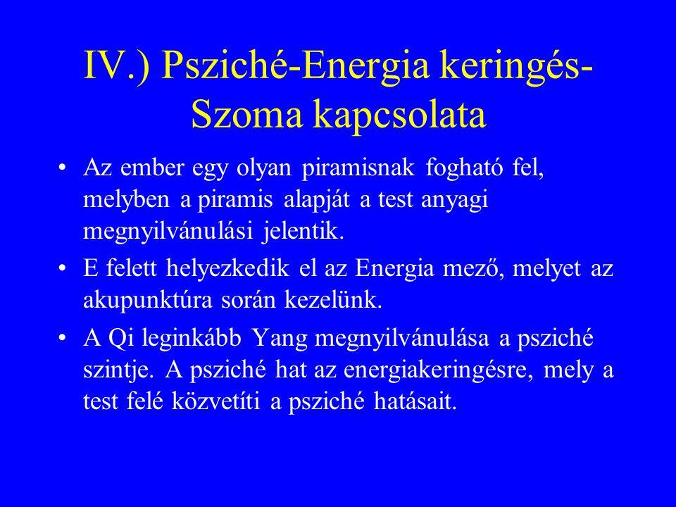 IV.) Psziché-Energia keringés-Szoma kapcsolata