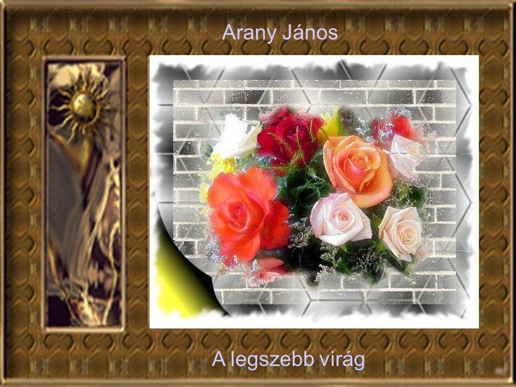 Arany János A legszebb virág A legszebb virág