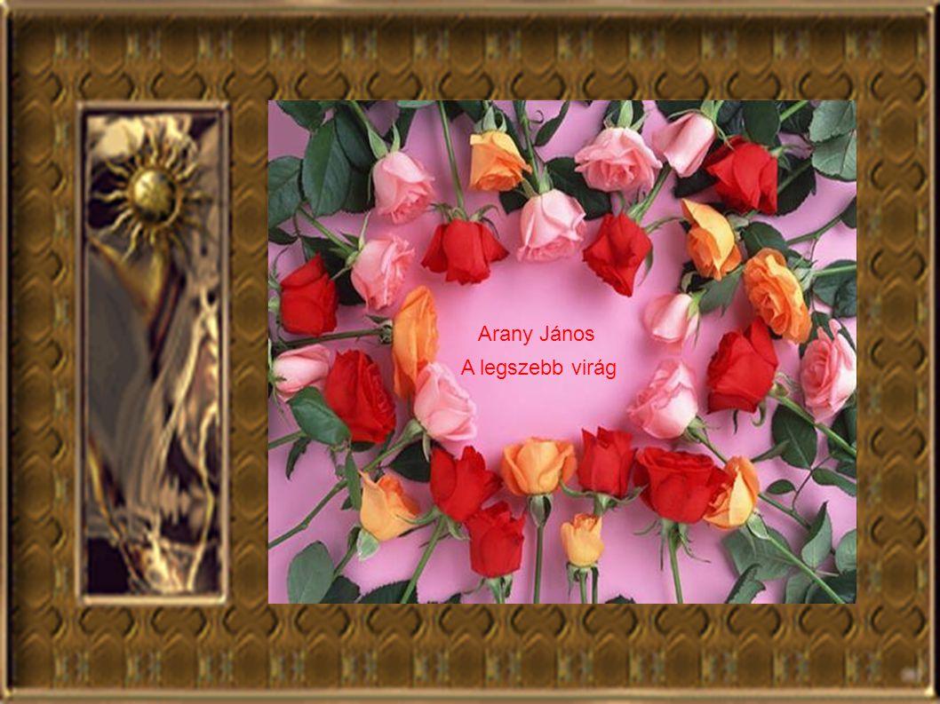 Arany János A legszebb virág