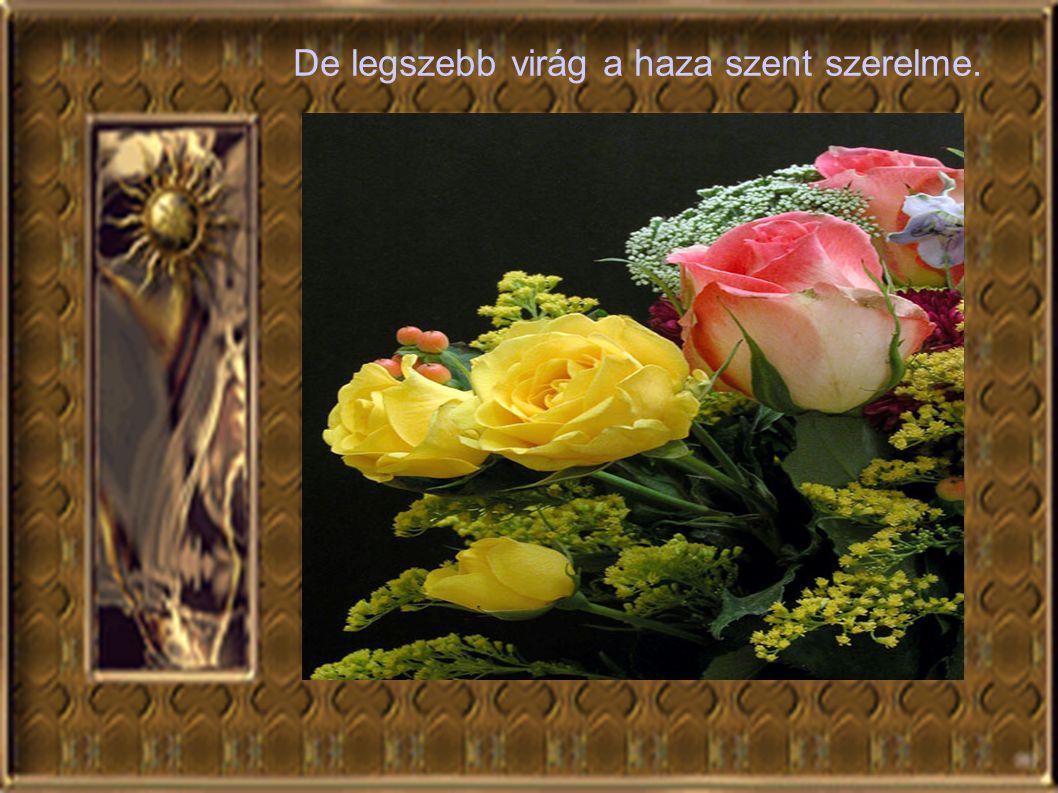De legszebb virág a haza szent szerelme.