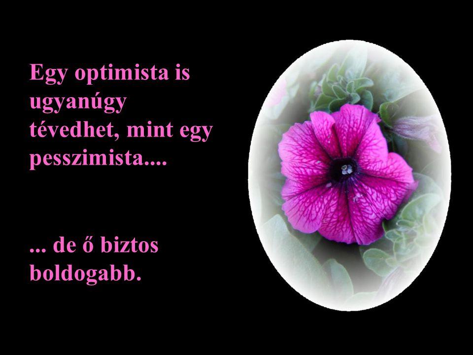Egy optimista is ugyanúgy tévedhet, mint egy pesszimista....