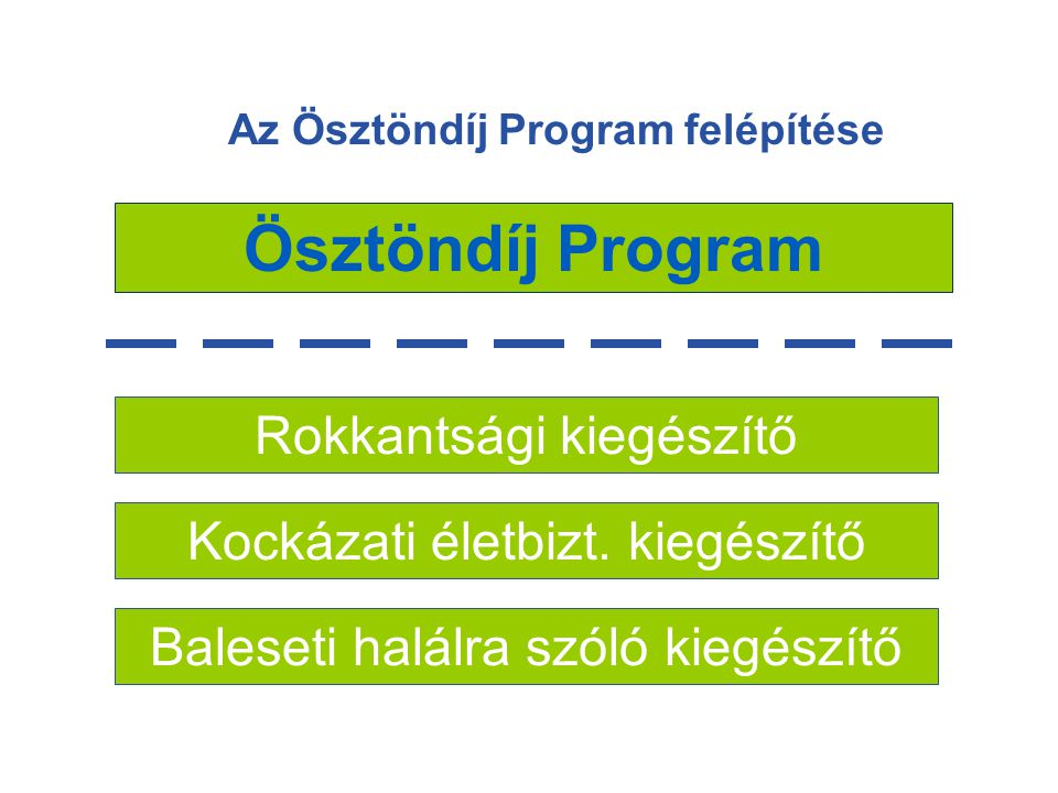 Az Ösztöndíj Program felépítése