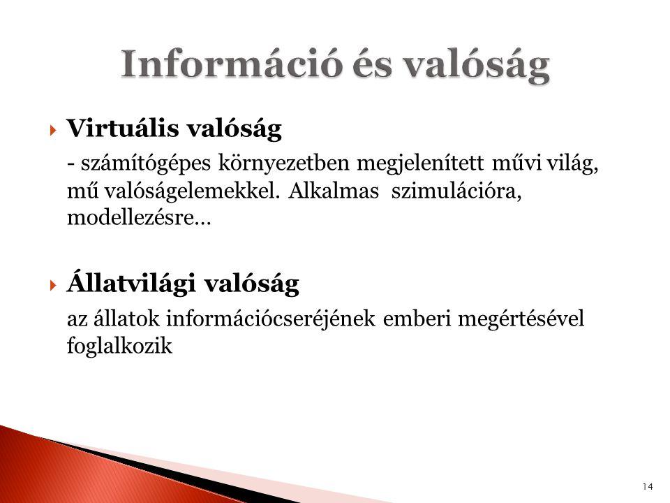 Információ és valóság Virtuális valóság