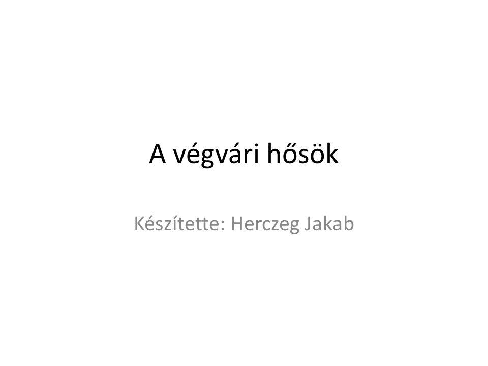 Készítette: Herczeg Jakab