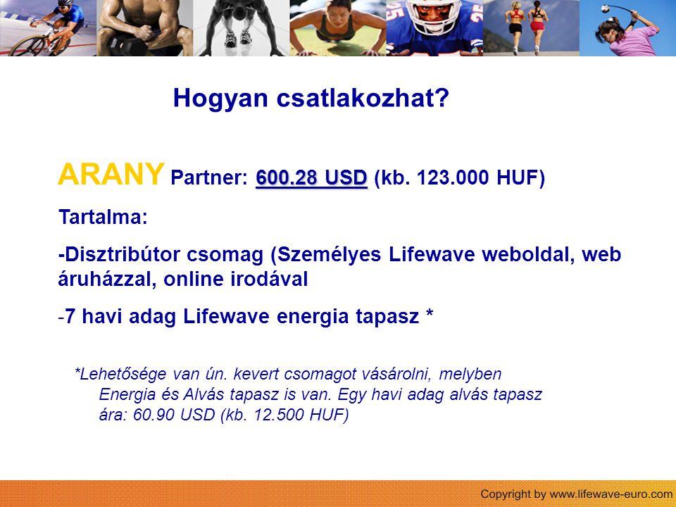 ARANY Partner: 600.28 USD (kb. 123.000 HUF)