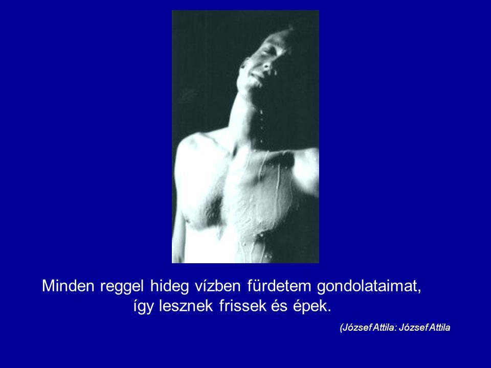 (József Attila: József Attila