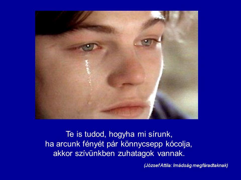 Te is tudod, hogyha mi sírunk, ha arcunk fényét pár könnycsepp kócolja, akkor szívünkben zuhatagok vannak.