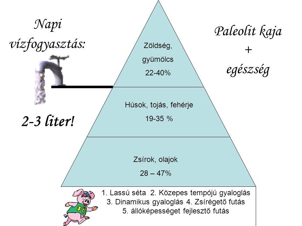2-3 liter! Napi Paleolit kaja vízfogyasztás: + egészség Zöldség,