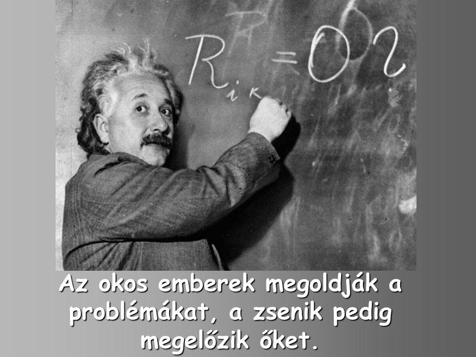 Az okos emberek megoldják a problémákat, a zsenik pedig megelőzik őket.