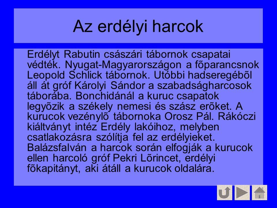 Az erdélyi harcok