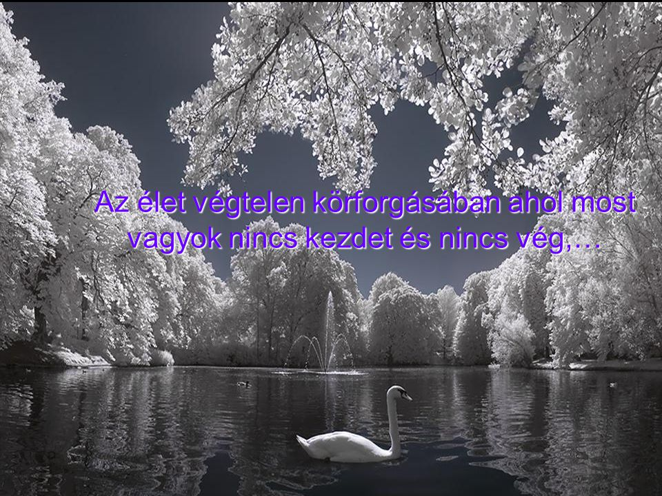 Az élet végtelen körforgásában ahol most vagyok nincs kezdet és nincs vég,…