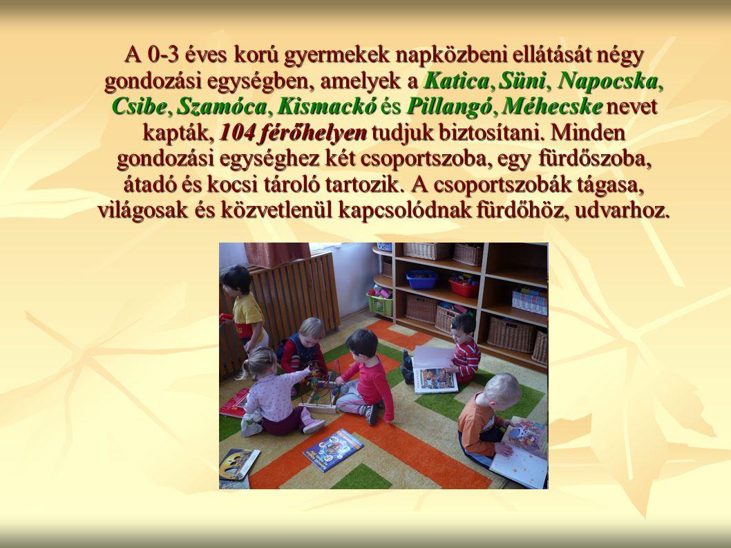 A 0-3 éves korú gyermekek napközbeni ellátását négy gondozási egységben, amelyek a Katica, Süni, Napocska, Csibe, Szamóca, Kismackó és Pillangó, Méhecske nevet kapták, 104 férőhelyen tudjuk biztosítani.