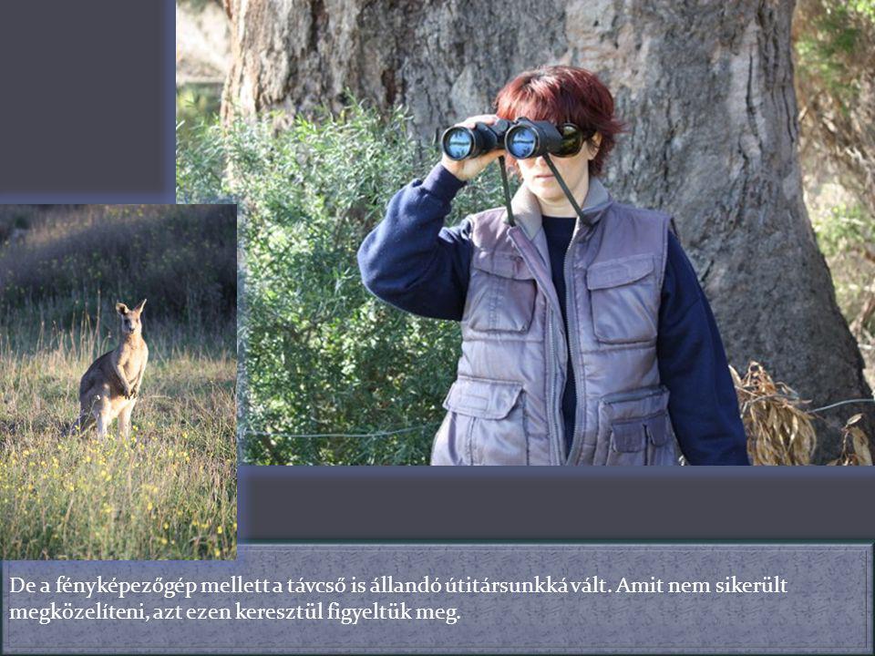 De a fényképezőgép mellett a távcső is állandó útitársunkká vált