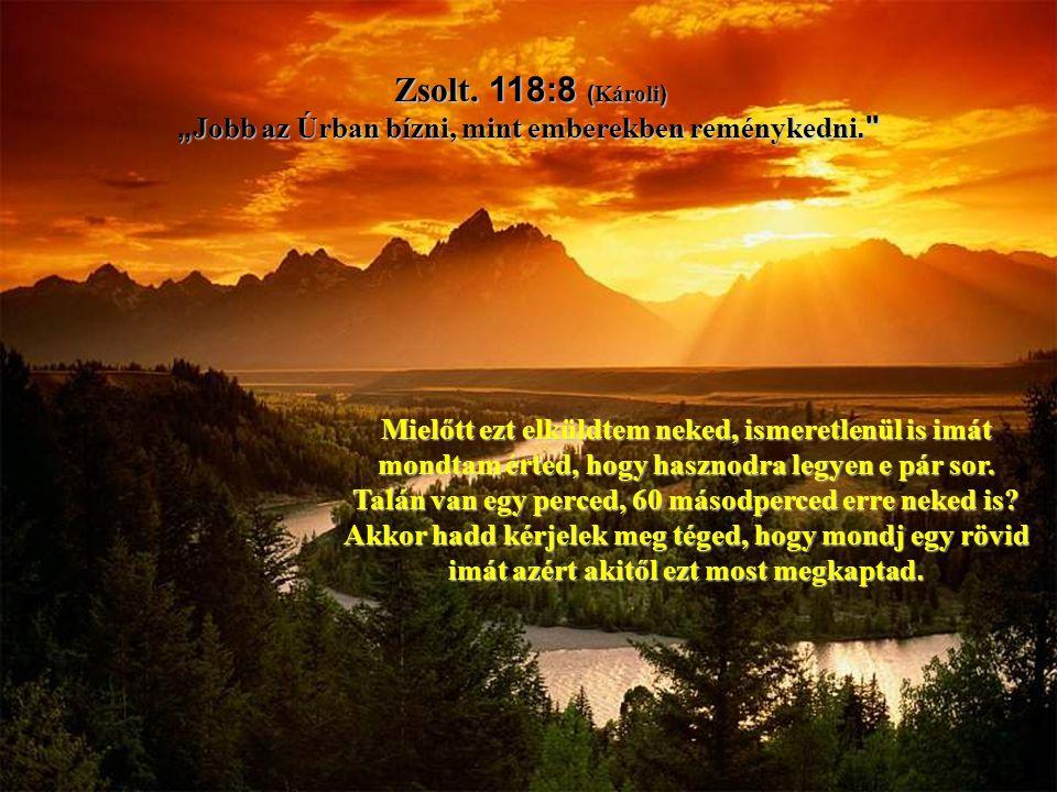 """Zsolt. 118:8 (Károli) """"Jobb az Úrban bízni, mint emberekben reménykedni."""