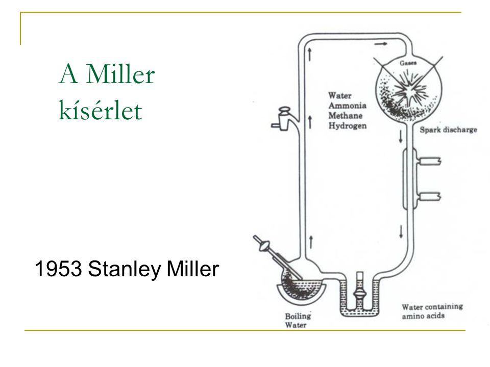 A Miller kísérlet 1953 Stanley Miller