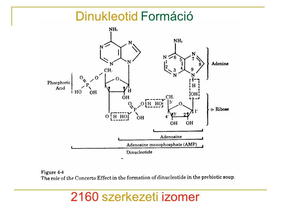 Dinukleotid Formáció 2160 szerkezeti izomer
