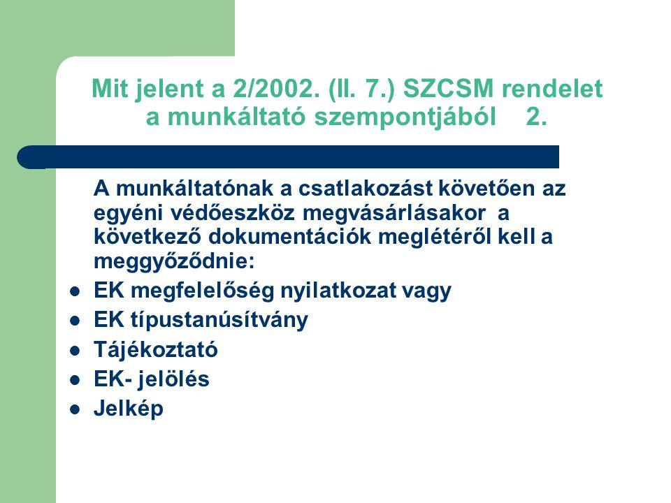 Mit jelent a 2/2002. (II. 7.) SZCSM rendelet a munkáltató szempontjából 2.
