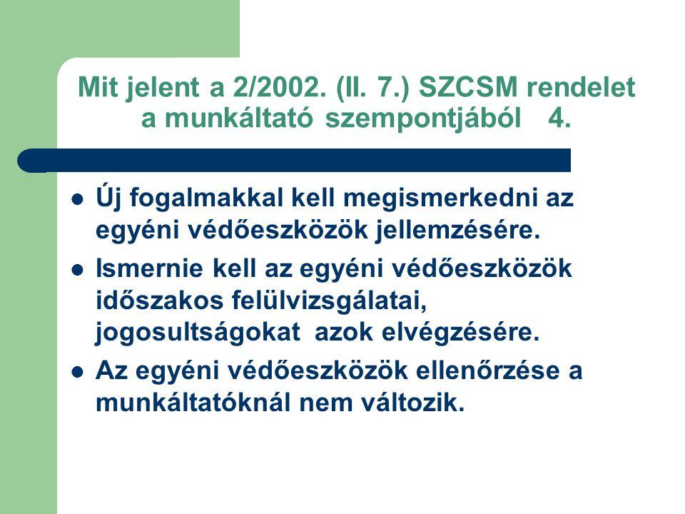 Mit jelent a 2/2002. (II. 7.) SZCSM rendelet a munkáltató szempontjából 4.