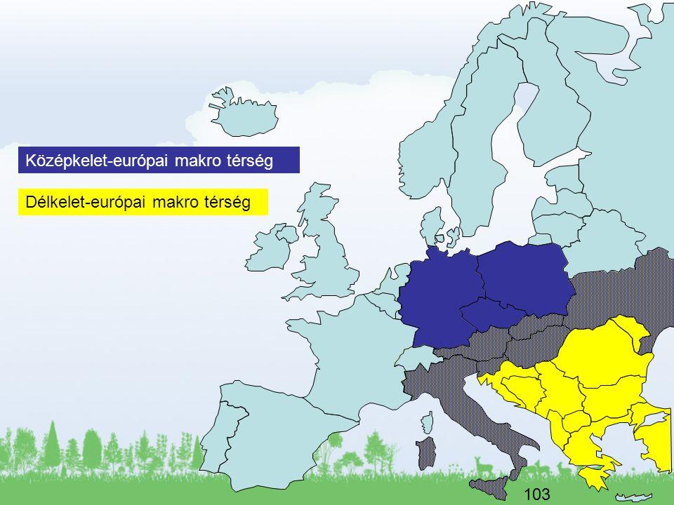 Középkelet-európai makro térség