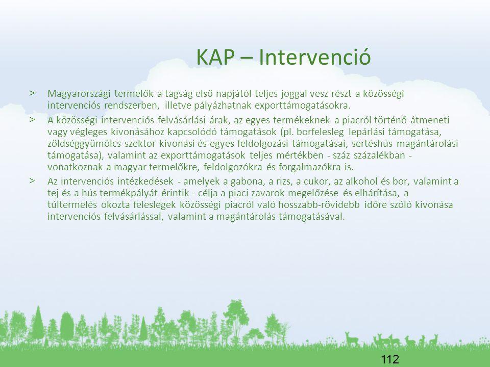 KAP – Intervenció